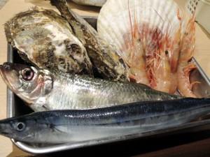 本日の海鮮